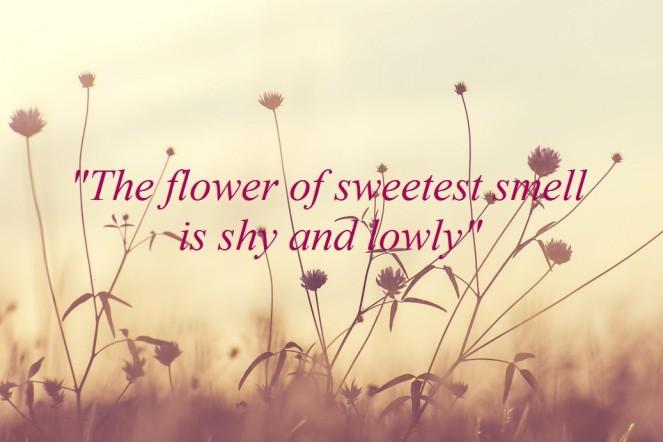 Flowersweetest.jpg