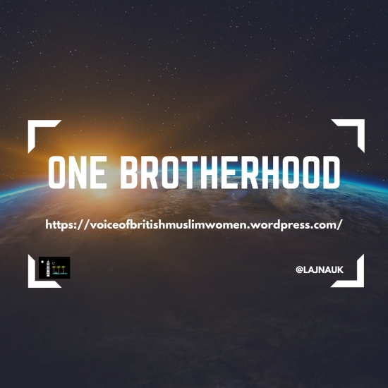 Manaal Blog - Brotherhood