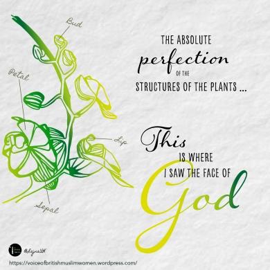 God - Plants